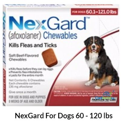 NexGard For Dogs 60 - 120 lbs  for more details visit http://coolsocialads.com/nexgard-for-dogs-60---120-lbs--77157
