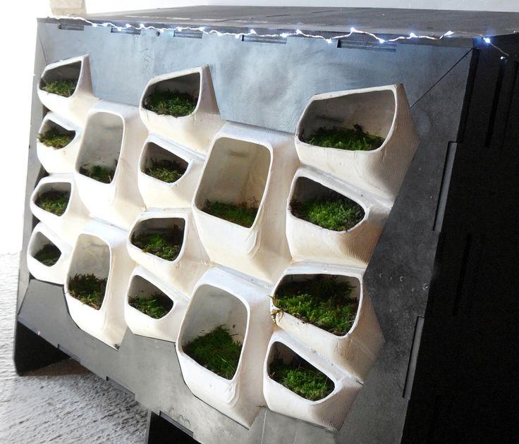Gallery of This Modular Green Wall System Generates Electricity From Moss - 13