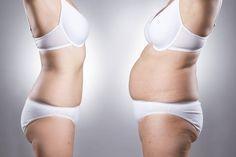La dieta Plank è un nuovo regime dietetico che fa perdere peso velocemente, chi ha provato questa dieta conferma di aver avuto un importante perdita di pes