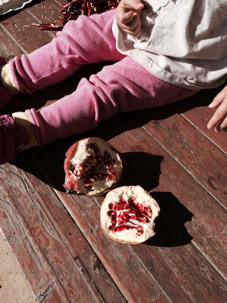 with pomegrante