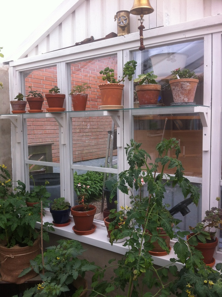 Vackert växthusfönster! Från trädgårdsrundan i nordvästra Skåne.