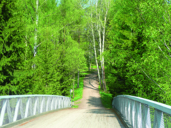Kuninkaantammen sijainti Keskuspuiston kainalossa tarjoaa mainiot ulkoilumahdollisuudet. / Helsinki's Central Park is right next door to Kuninkaantammi.