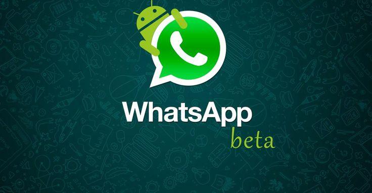 WhatsApp Beta: aprenda a escrever em negrito, itálico e riscado no aplicativo - http://www.showmetech.com.br/whatsapp-beta-android-negrito-italico/