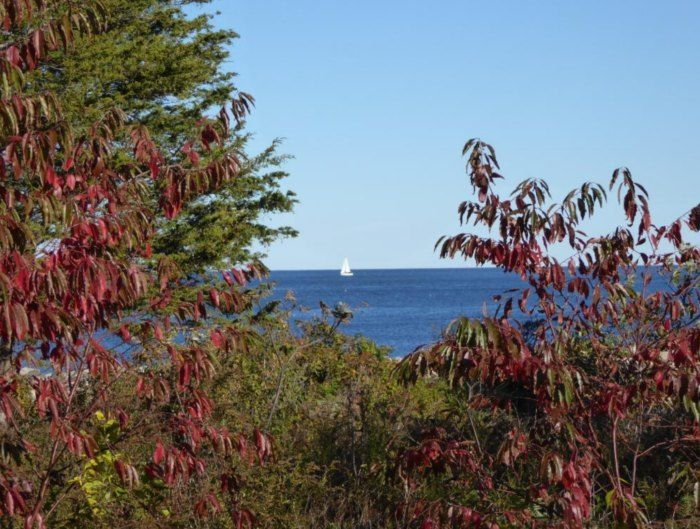 4 odiorne state park seacoast region in 2020 state parks new hampshire hiking trails pinterest