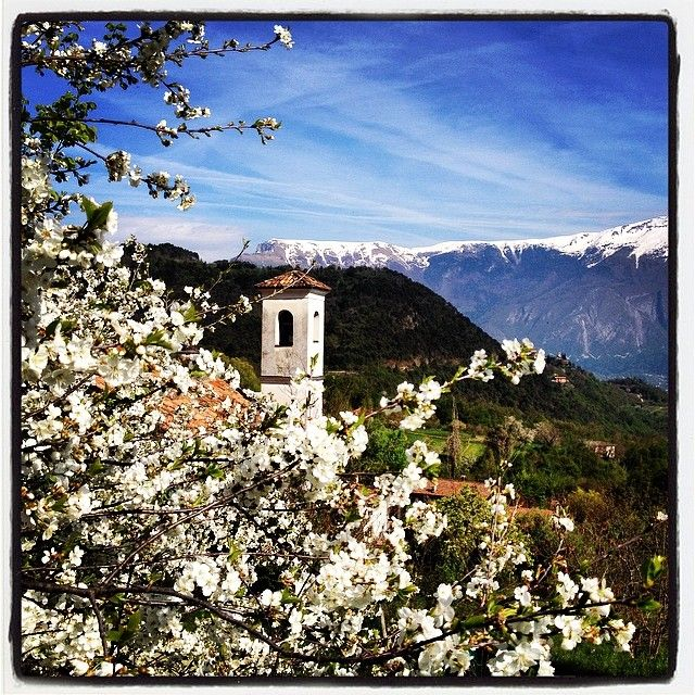 Villa il campanile #tremosinewhatelse