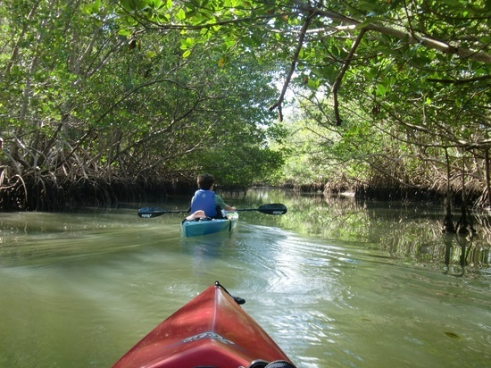 Oleta River State Park Located Right On Biscayne Bay And