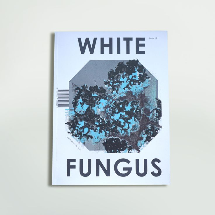 The 15th issue of White Fungus features interviews with Jeff Mills, James Hoff, and Lin Chi-wei.