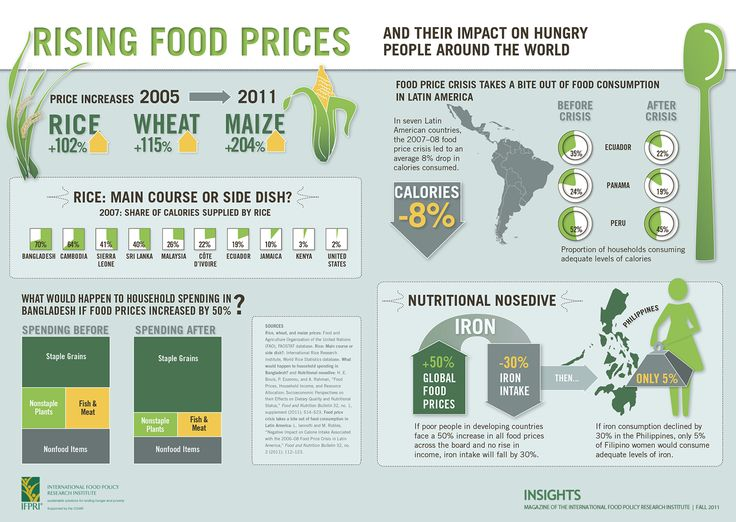 Rising Food Prices and the Impact on Hunger Around the World -- via Food Policy Research Institute:  Internet Site,  Website, Rise Food, Web Site, Food Policy, Food Price, Price Infographic, Food Security, International Food