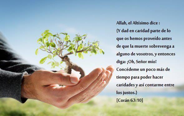 #Frase #Islam #Daawa #Hadith