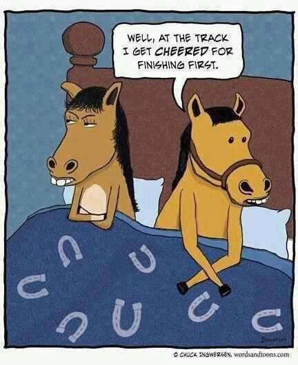 horse cartoon sex Fallout cartoon porn comic - hotpicsex.com.
