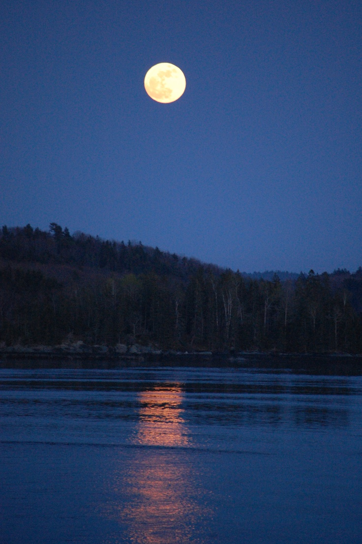 A picture I took of the super moon in Castine, Maine on May 5th.