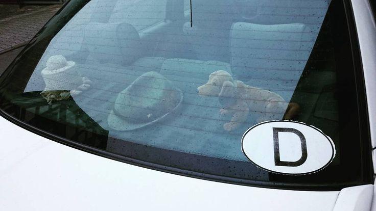 #germany in a #nutshell  Wow alles dabei!  #gehäkelter#klopapierüberzug #wackeldackel #hut #deutschlandaufkleber #audi #audi80  #hat #car