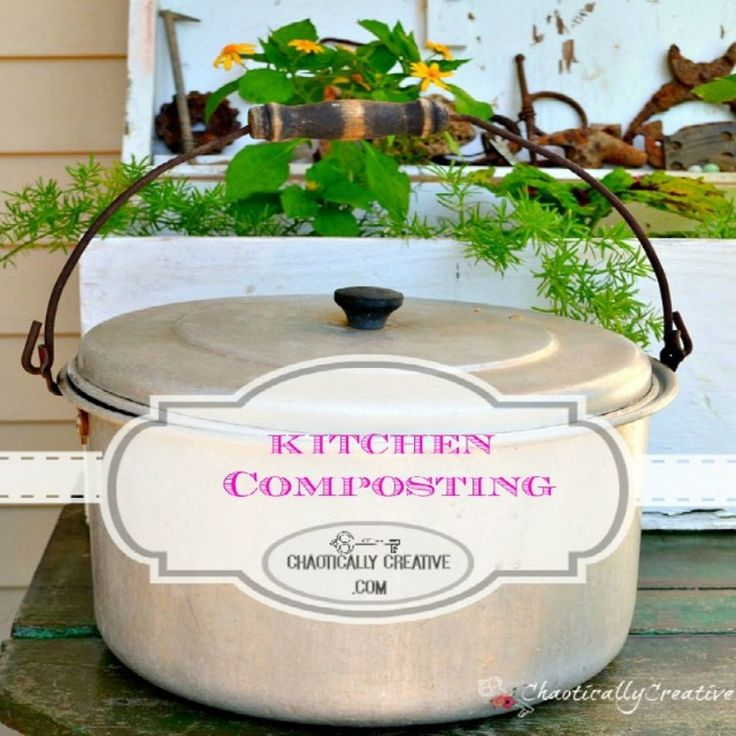 Kitchen Composting For Beginners - I like this as a compost pot for the counter.  I got a cheapo old ice bucket w/lid at a garage sale that is in woodtones.  Works great.