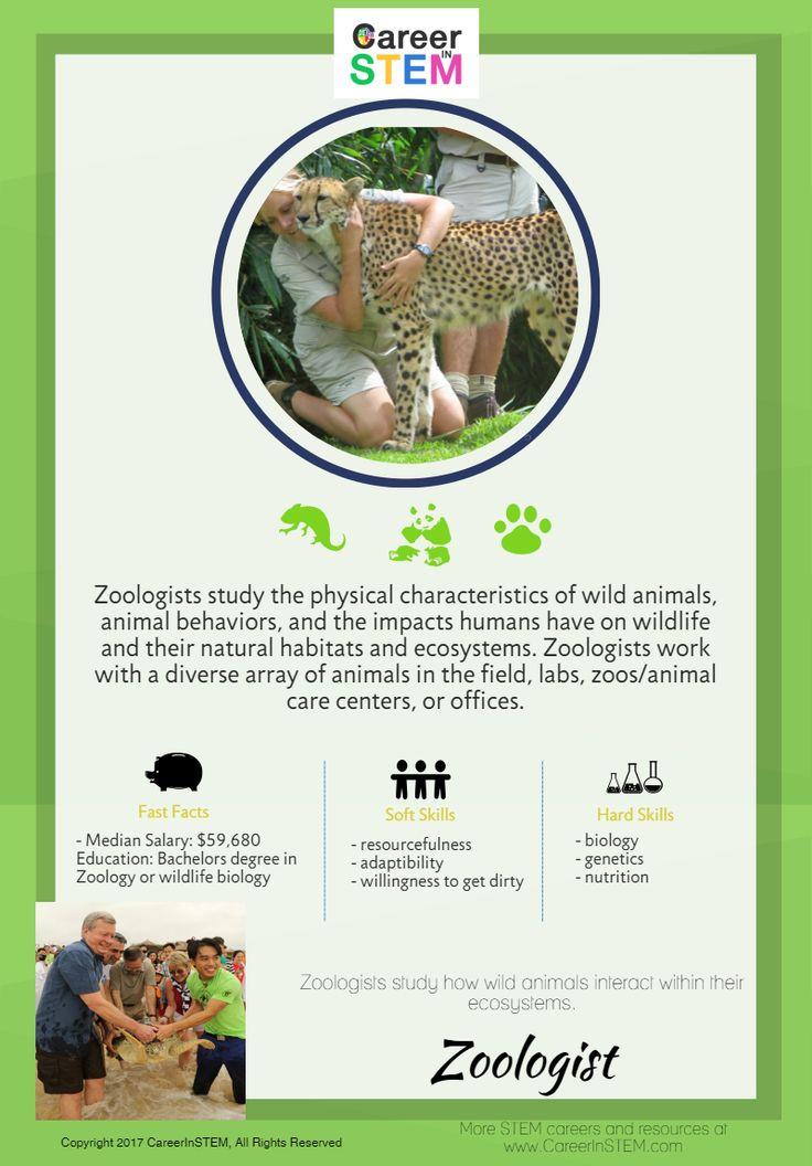 Middle School Stem Career Exploration Activities Explore Stem Careers 100 Online Zoologist Career Zoology Career Career Exploration Activities
