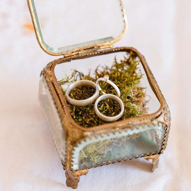Beautiful and antique: wedding rings on a bed of moss. See more details about this special #elopement inspiration by @juliabasmannphotography #onhzwblog #hochzeitswahn #hochzeitsblog TEAM hair piece @la_chia_headpieces // paper goods @101living // flowers @die_blumenfrau_blattwerk // h&m @bridefulbridestyling // decoration @rosabraun // ring box #mariastuartinteriors // dress @laona.official // groom attire @selected_official // rings @fingerglueck #elopementideas #weddingideas #instabride…