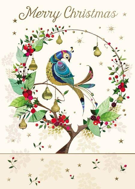 Lynn Horrabin - Partridge In Pear Tree Christmas Card. Find at DesignDesign.us