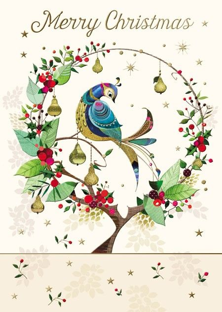 Partridge In Pear Tree Christmas Card. Find at DesignDesign.us