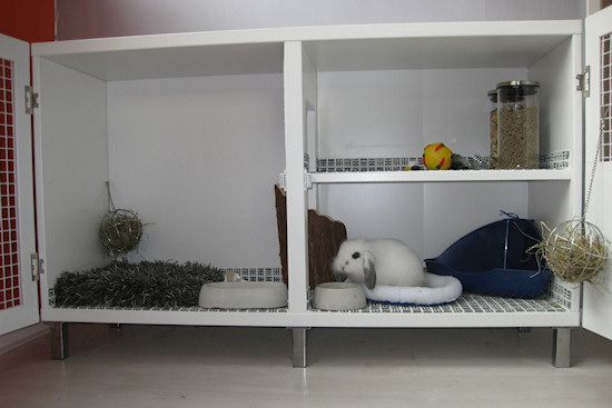 The successfful conversion of a cupboard into an indoor rabbit hutch.