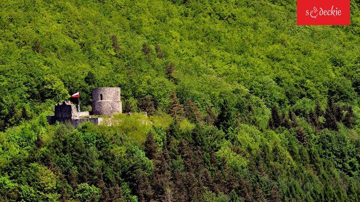 Ruiny zamku w Rytrze, fot. E. Mrózek