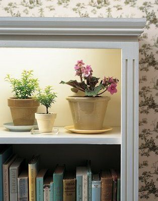 mount grow light underneath a shelf, and you can have flowers year round.