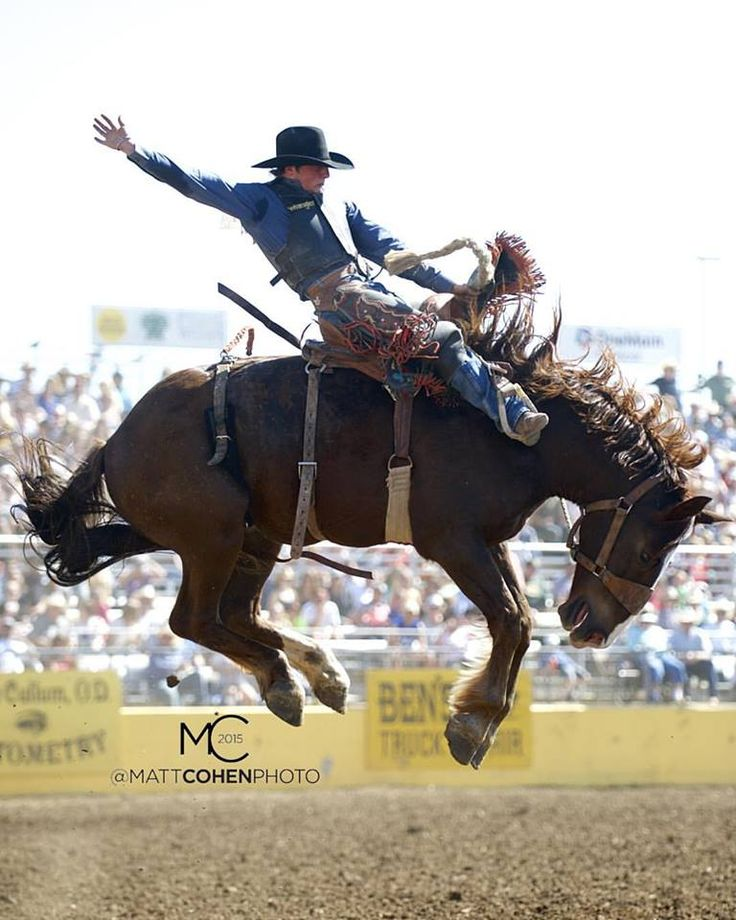 Cody Wright Rodeo Rodeo Cowboys Rodeo Time Rodeo Life