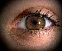 Eye Gazing: Zijn is gezien worden  Oogcontact is van nature een instinctief-menselijke behoefte. Baby's bijvoorbeeld, verleiden hun moeders vaak tot langdurig staren in elkaars pupillen. De meditatietechniek van het 'eye gazen' verenigt twee levenslang fascinerende vragen: Wie ben ik? en Wie ben jij?