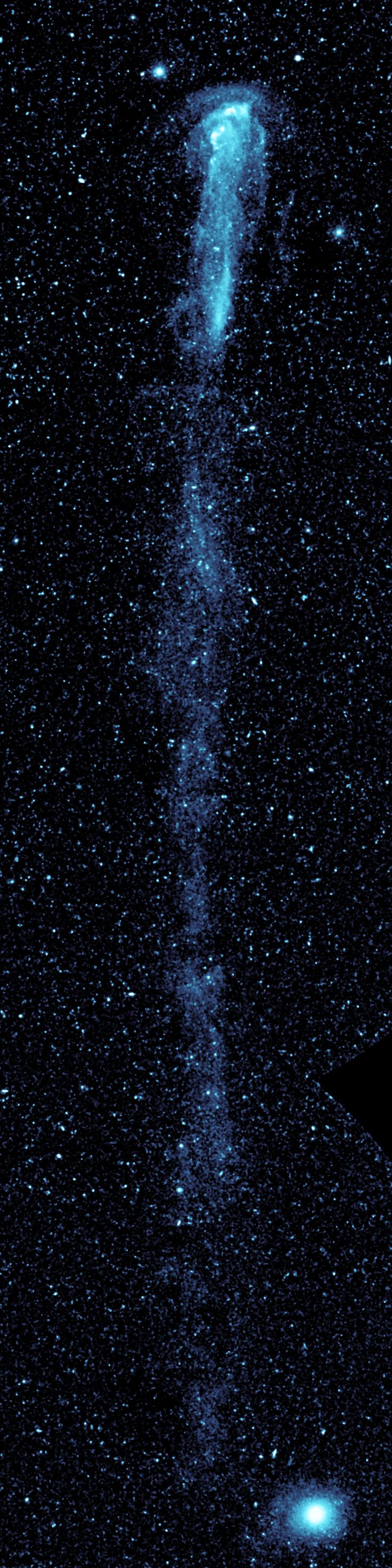 The star Mira, with its 13-light-year-long tail, zips through the galaxy at 291,000 miles per hour! This image was made from several Galaxy Evolution Explorer images put together into a mosaic.