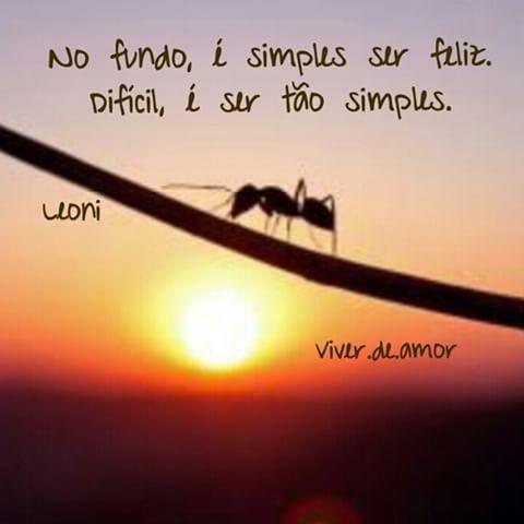 Ser feliz é simples. Difícil é ser simples. #Deus#fé#esperança#pensamentos#sentimentos#atitude #frases #viverdeamor #frasesdodia#otimismo#sabado #amor#alegria#fé#oração#saúde #positividade #mensagem#bomdia
