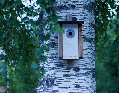 """Check out new work on my @Behance portfolio: """"Where The Birds Take Some Rest • Birdhouses"""" http://be.net/gallery/40616693/Where-The-Birds-Take-Some-Rest-Birdhouses"""