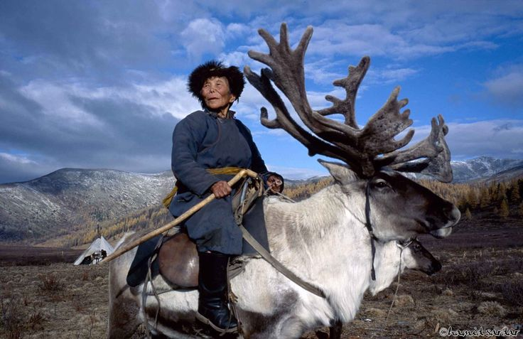(Grandma did not get run over by a reindeer, she saddled up and rode it across Mongolia)    Photography by Hamid Sardar-Afkhami    Shaman-Matriarch-West-Taiga-Hovsgol-2000