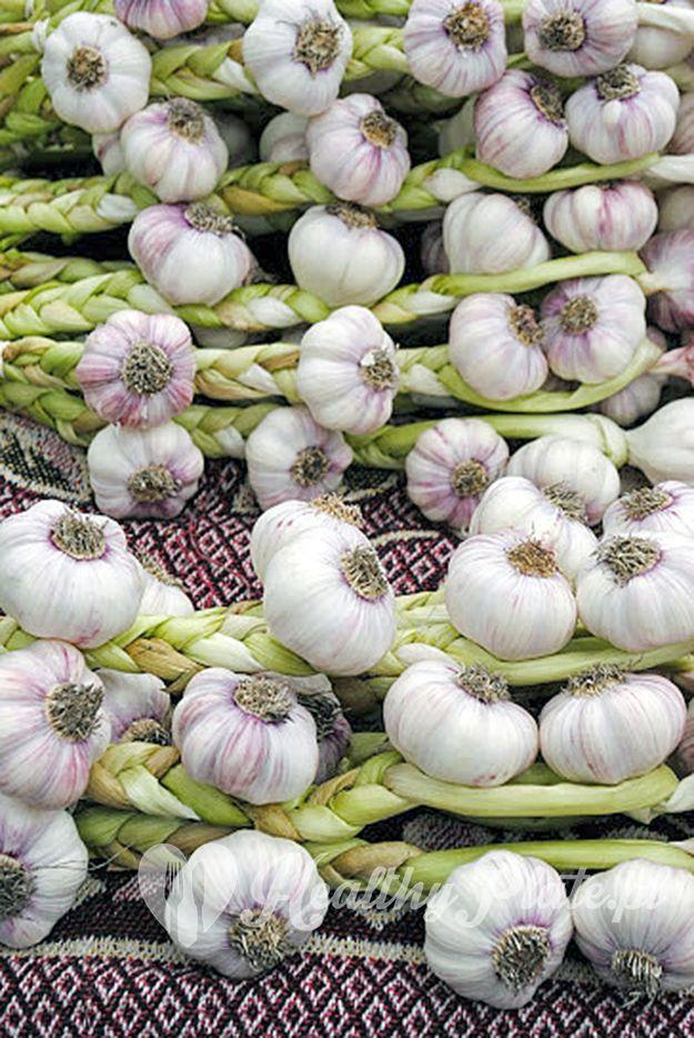 garlic / ajo