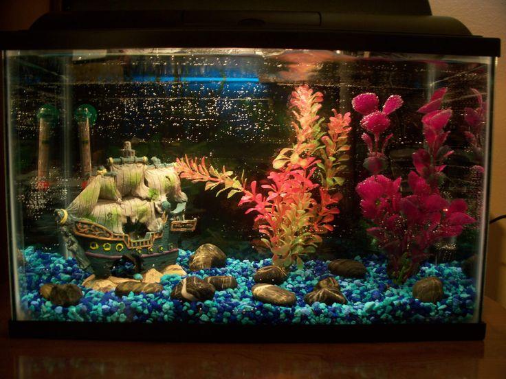 [5-gal Betta Tank Setup] - 130870 & The 56 best Betta tank setup ideas images on Pinterest | Betta tank ...