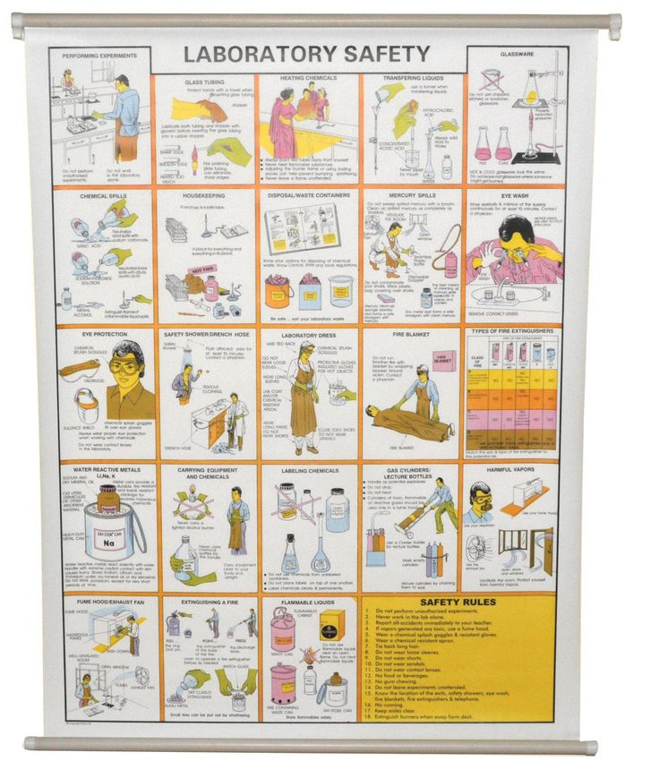 Chart Laboratory Safety Safety, Safety rules, Plastic