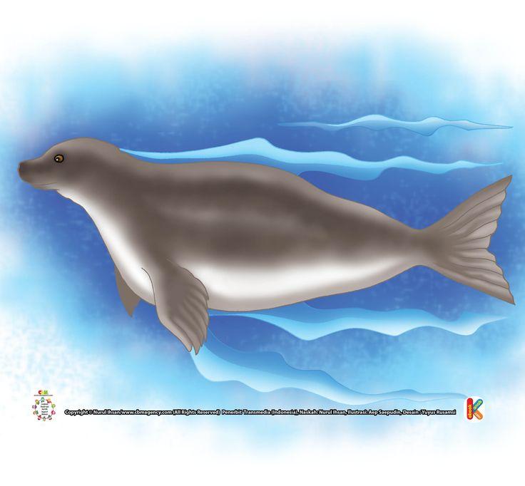 Apa Hanya Nerpa, Anjing Laut yang Hidup di Air Tawar