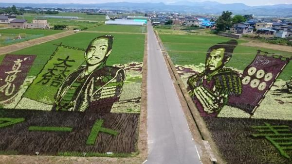大河ドラマ「真田丸」の田んぼアートの震えるほど素晴らしい完成度が話題に!芸術もついにここまで来たのか・・・