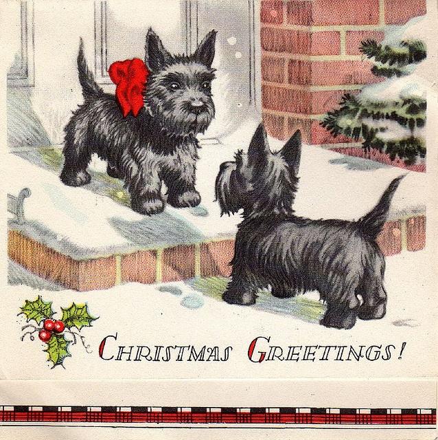 d5386e6db8ccff9a0c2efb4e9789358b--christmas-greeting-cards-vintage-christmas-cards.jpg