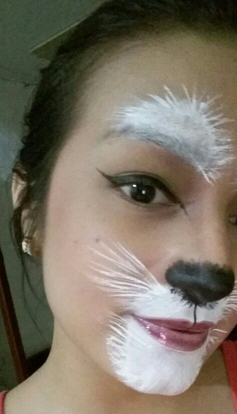 Awful Picture!!! But possible white Rabbit makeup.
