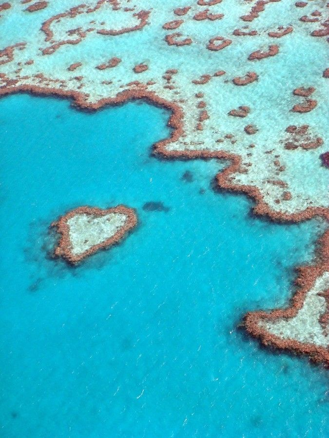 Heart Reef, Airlie Beach, Great Barrier Reef, Australia - did a helicopter flight over this, magnificent!