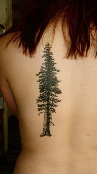 Giant sequoia redwood tree done by Brucius at Black and Blue Tattoo in San Francisco.