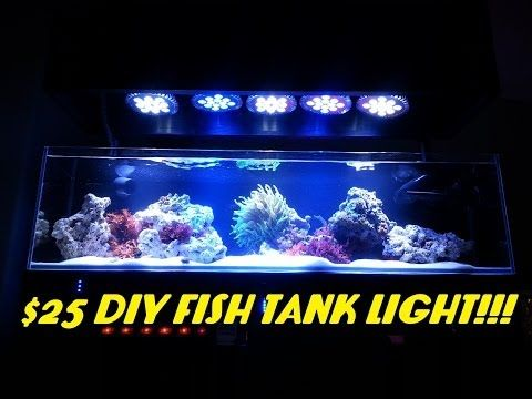 $25 DIY Fish Tank Light!!! (ABI 12 Watt Blue/White Par38) - YouTube