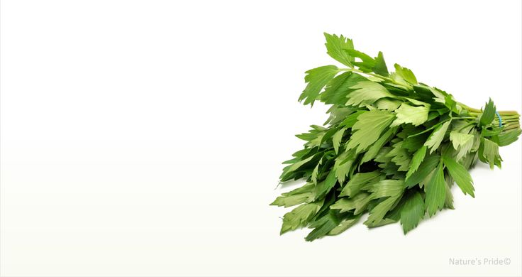how to use herbs forward lovage tip of the day herbs that heal lovage ...