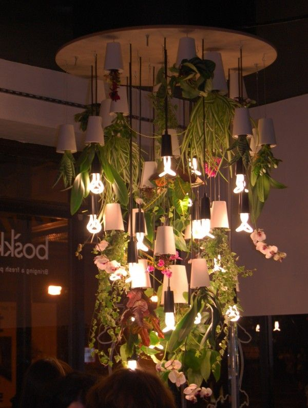 Old Shoreditch Station. Lamp with hanging plants in Boskke upside-down pots and Plumen lights.
