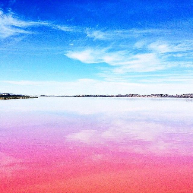 No, it's not the world's largest source of Pepto-Bismol, it's the naturally pink Lake Hillier in Western Australia. Photo courtesy of garypeppergirl via canvastravelco on Instagram.