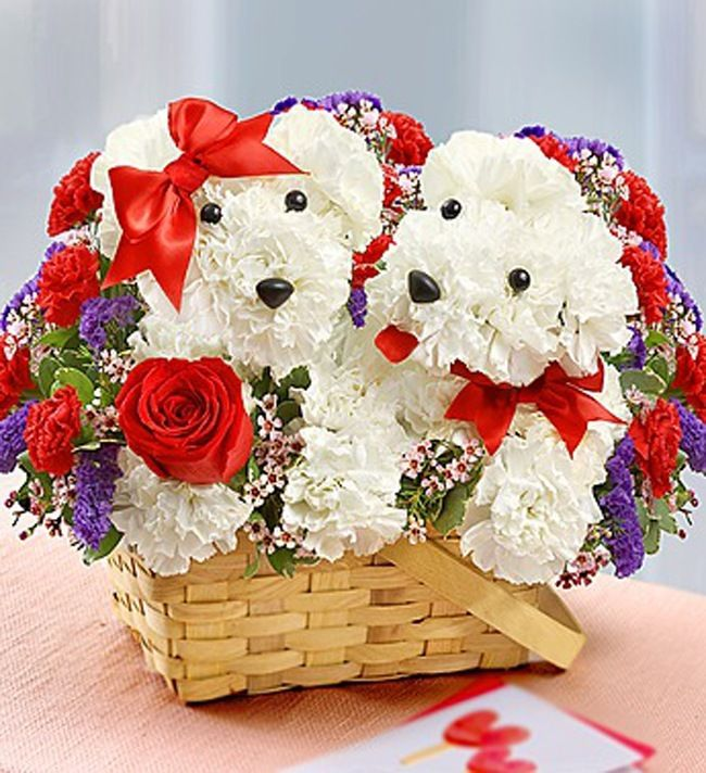This has to be one of the cutest flower arrangements I've ever seen!