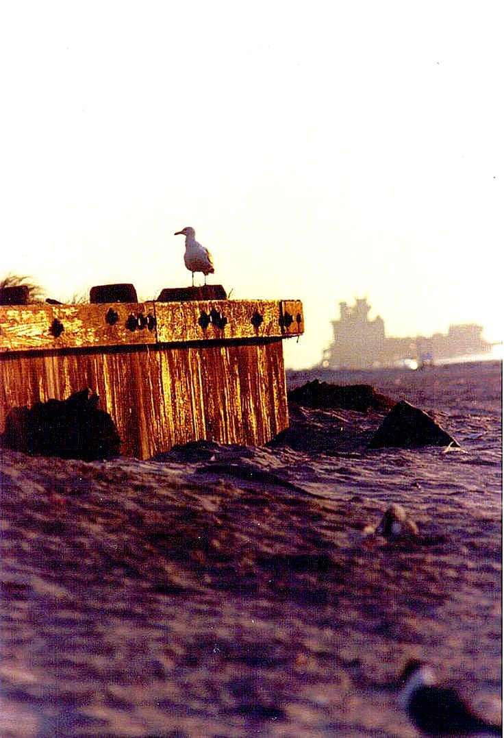100 best atlantic city times gone by images on pinterest brigantine nj 1978 with brigantine castle in the background nvjuhfo Choice Image