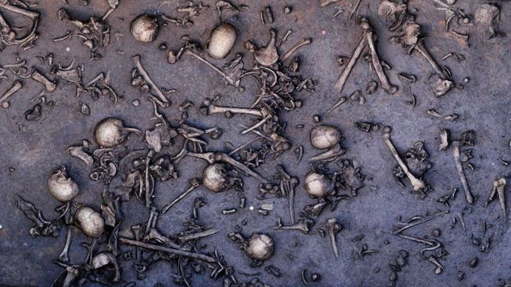 Grisly find suggests northern Europe was more organized (and violent) 3,000 years ago than previously thought