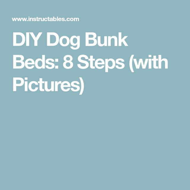 DIY Dog Bunk Beds: 8 Steps (with Pictures)