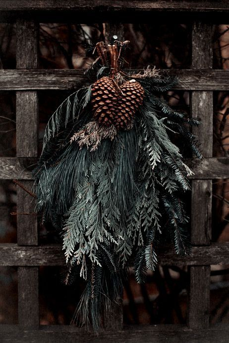 boughs and pine cones for decorating