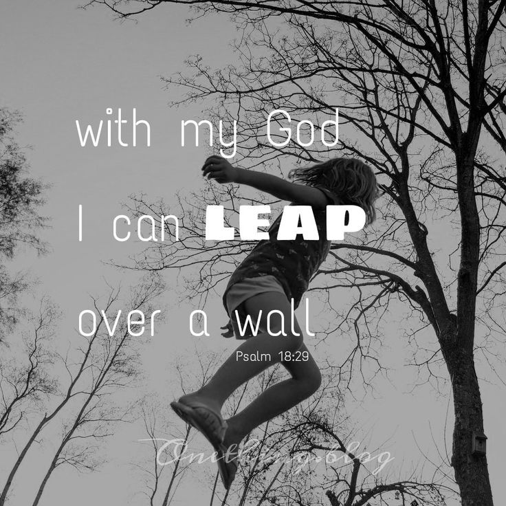 www.onething.blog * with my God I can leap over a wall * nothing is impossible with God * no limits * be bold * Psalm 18:29