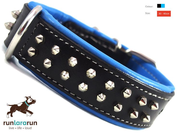 "runlararun - the best dog collars, leads and harnesses - ""Zandra"" Collar - 2 Row Hex Studs, $34.95 (http://www.runlararun.com/zandra-collar-2-row-hex-studs/)"